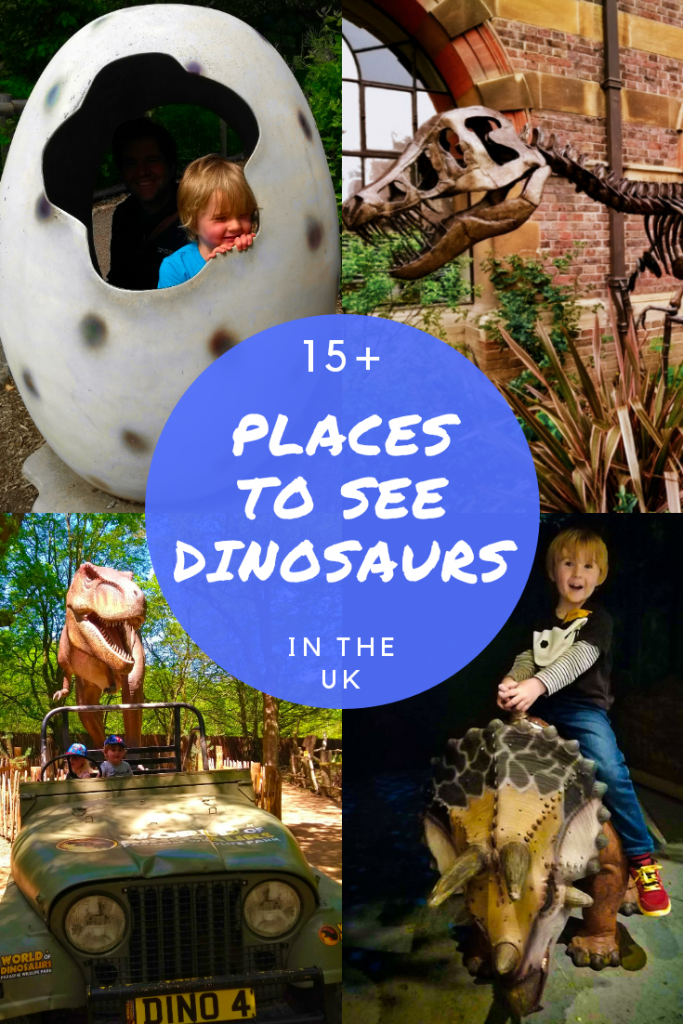 Best Places to See Dinosaurs in the UK. Dinosaurs pop up everywhere in the UK, from museums to wild life parks and more. I've got the very best listed here.