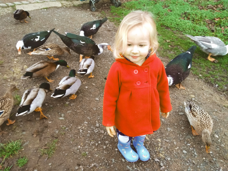 5 Things to Do in Ely With Kids