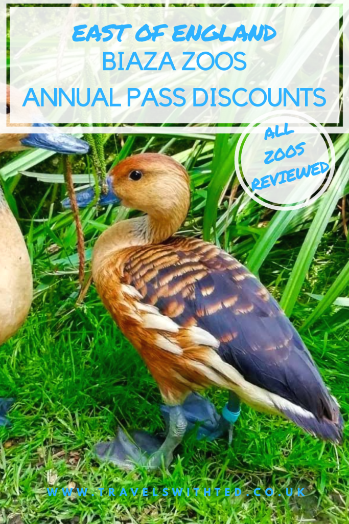 Details of discounts available when you buy an annual pass at an Eat of England zoo. All zoos in the scheme reviewed.