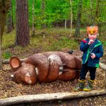 Thetford Forest Kids Activities and Trails - The Gruffalo Trail