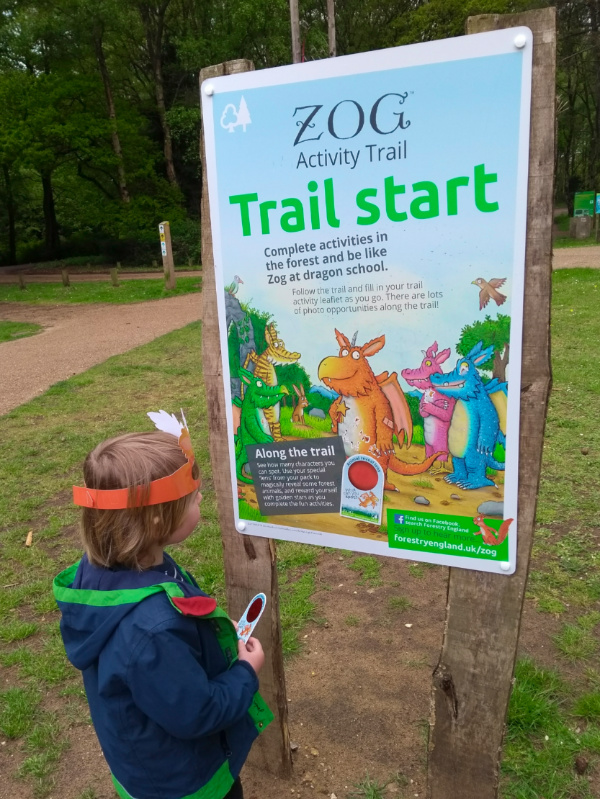 Thetford Forest Activities and Trails - Zog Trail