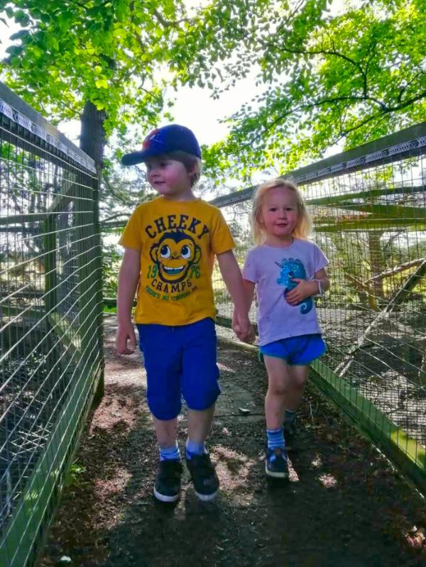 Kids on the Amur Leopard walkway