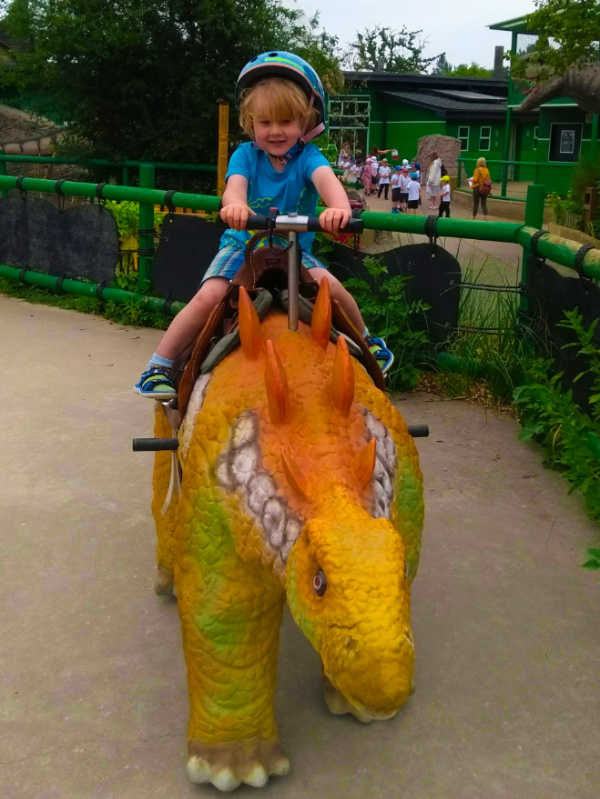 Ride a Dinosaur
