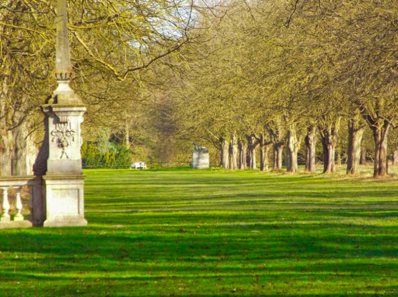 Coronation Avenue at Anglesey Abbey