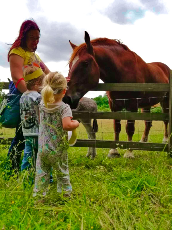 Museum of East Anglian Life with kids - Home Farm