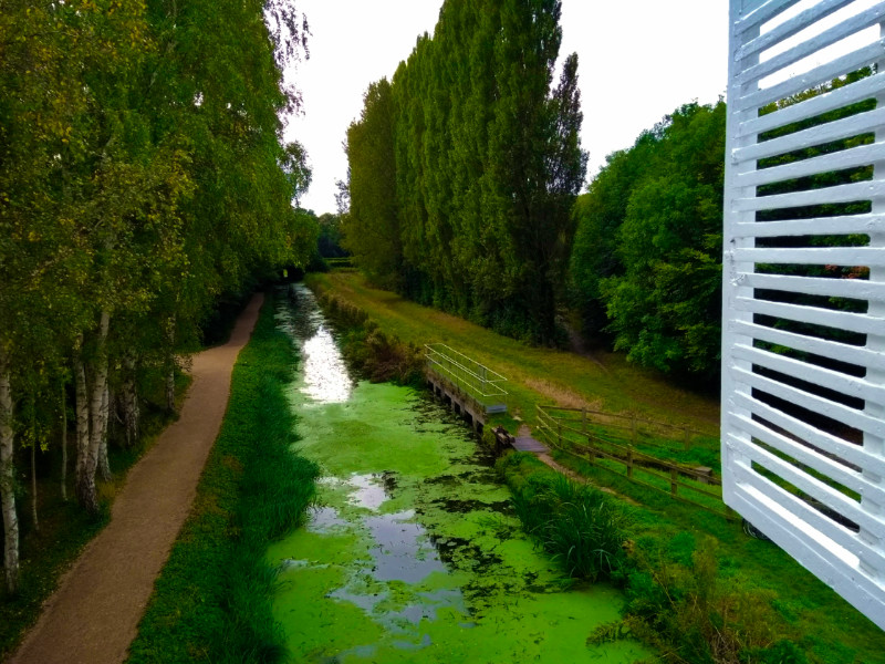 Anglesey Abbey - Riverside Walk